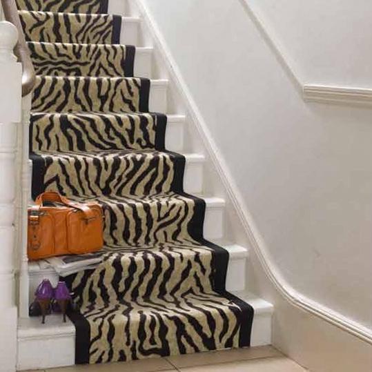 Ideas for home staircases ideas for home garden bedroom for Leopard print carpet stair runner