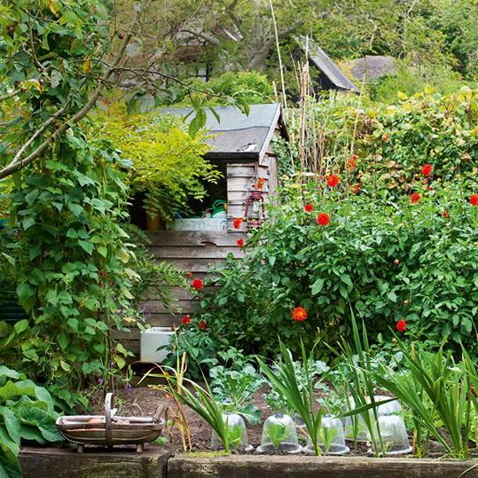 Easy garden ideas ideas for home garden bedroom kitchen for Easy home vegetable garden ideas