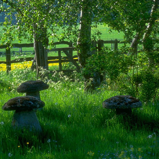 English country garden ideas photograph country garden ide for Country garden ideas
