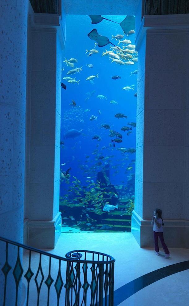 Underwater Living Space Idea Ideas For Home Garden