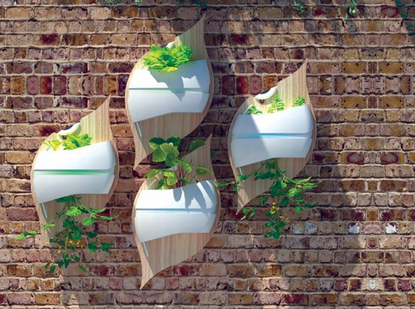 1-stylish-leaf-hydroponic-system