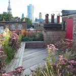 Rooftop Garden Design Ideas Adding Freshness to Your Urban Home