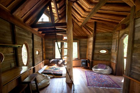 Tree house ideas for home garden bedroom kitchen - Treehouse masters interior ...