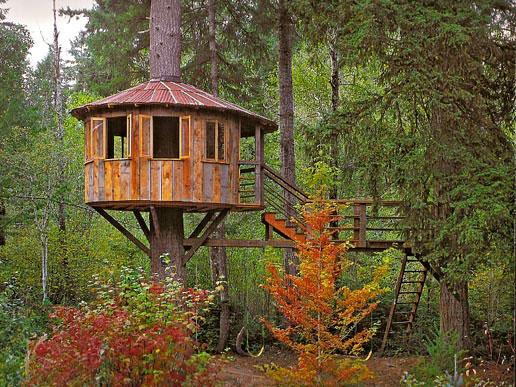 Tree House Ideas for Home Garden Bedroom Kitchen