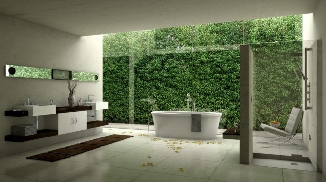 1-bath-natural-scenery