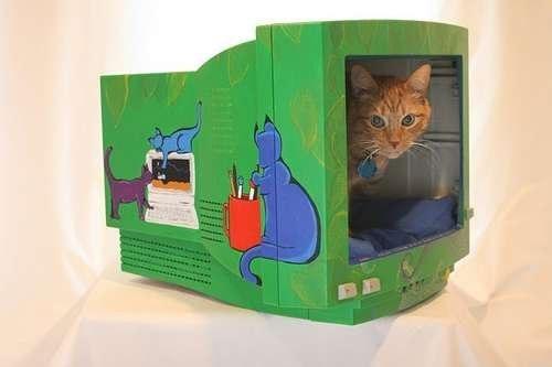 1-interior-apartment-converted-cat-house