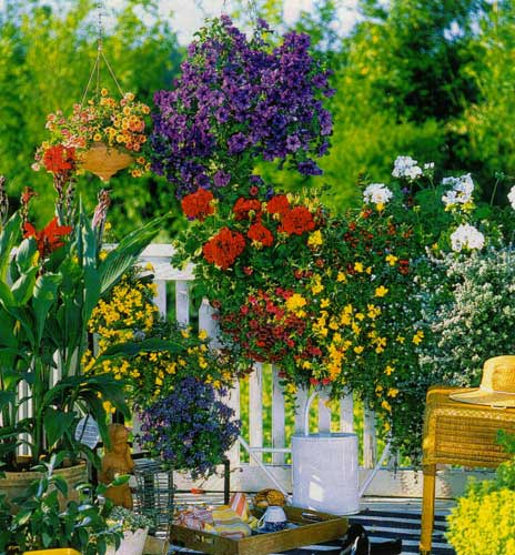 Garden Balconies: Flowering Balconies And Terraces