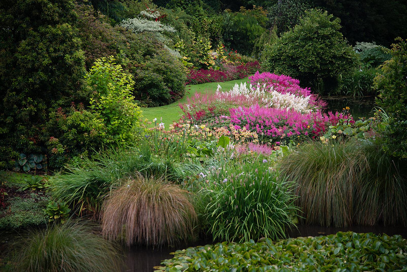 Beautiful garden in new zealand ideas for home garden for Garden design ideas new zealand