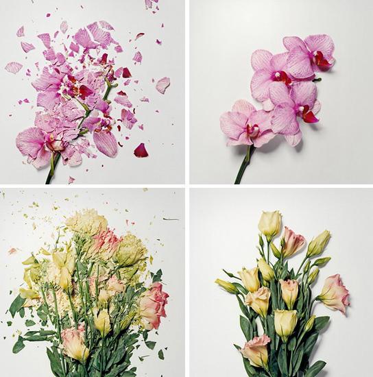 1-broken-flowers