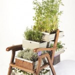 Very unusual furniture with ingrown plants