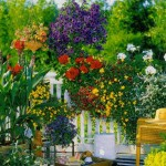 Flowers on your balcony as the beautiful garden