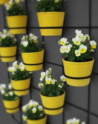 1-flowers-pots-interesting-ideas