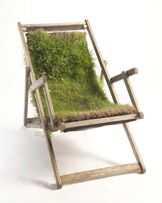 Very Unusual Furniture With Ingrown Plants Ideas For
