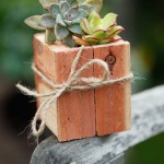 Beautiful wooden pots for plants