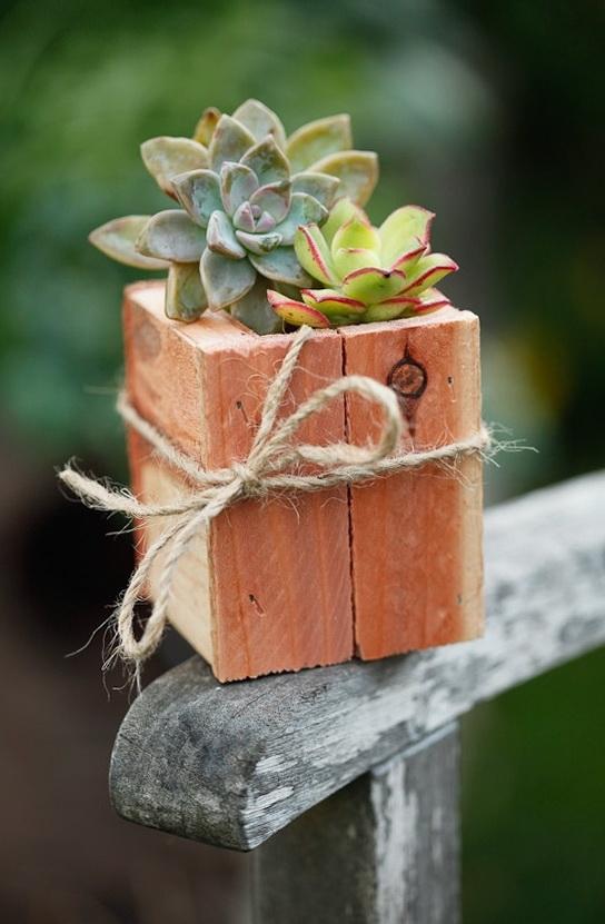 1-beautiful-wooden-pots-plants