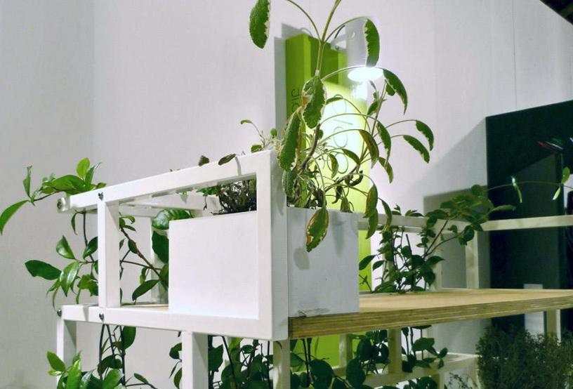 1-bookshelf-plants