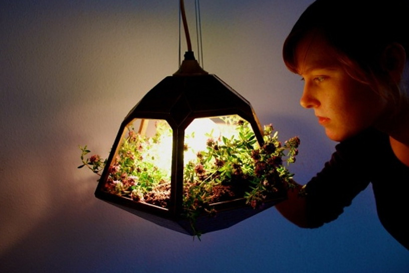 Beautiful Hanging Terrarium A Lamp Ideas For Home Garden Bedroom