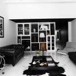 Black and White Interior Ideas for Shophouse