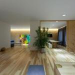 House by Ryntovt Design