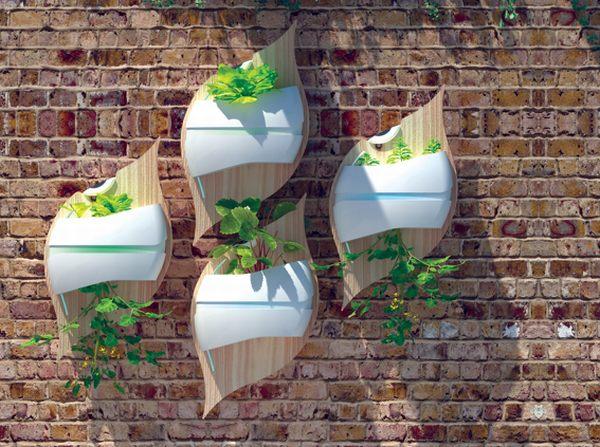 1-stylish-leaf-hydroponic-system