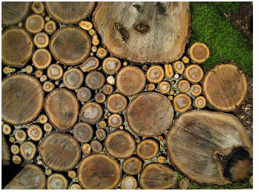 1-wood-slice-walkway