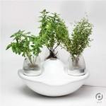 Portable home garden from Grinfingerov