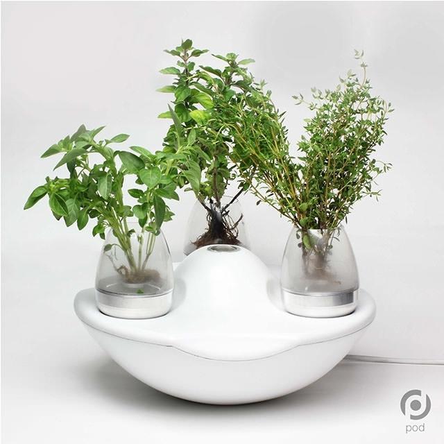 1-portable-home-garden-grinfingerov