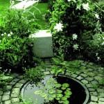 Decorative ponds