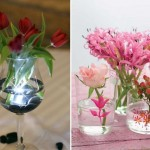 Decorate an apartment on Valentine's Day