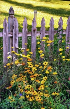 1-garden-style-country