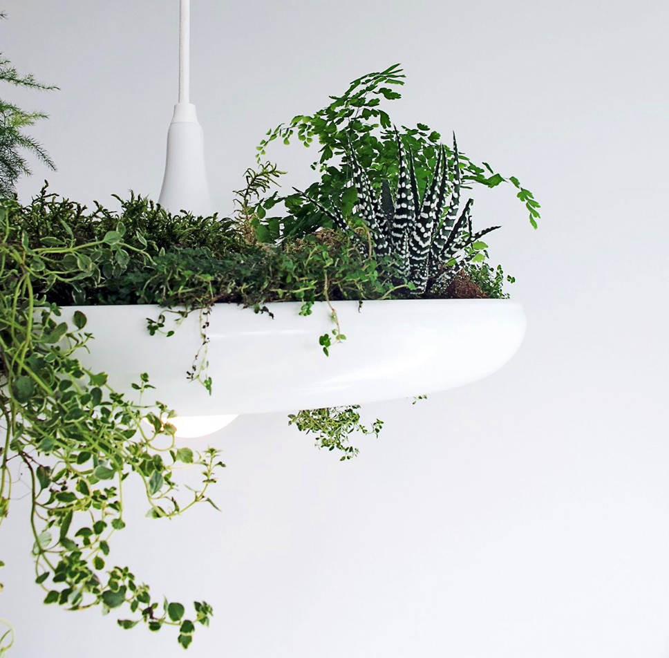 2-lamp-pot