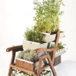 Very unusual furniture with ingrown plants