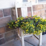 Old chair as a stand for flowerpot