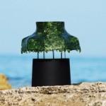 Interesting green light from algae