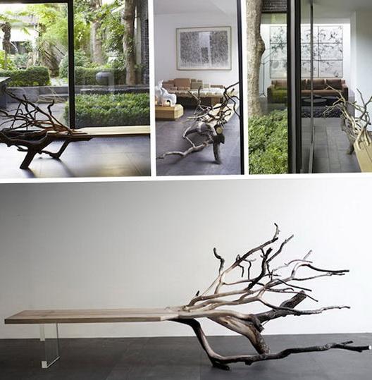 1-Fallen tree in the interior