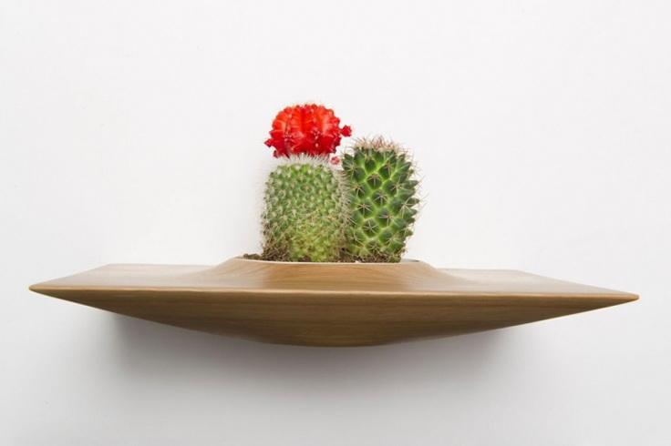 1-Wooden shelves for plants