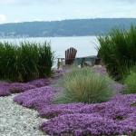 Making great landscape design and garden plots