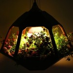 Beautiful Hanging terrarium - a lamp