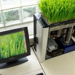 Unusual computer with a green lawn