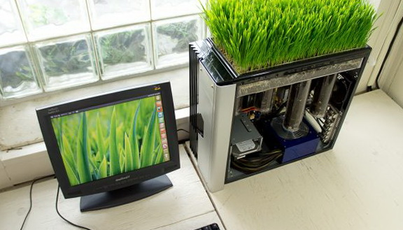 1-unusual-computer-green-lawn